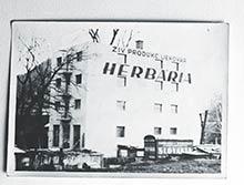 Továreň Herbaria včase výroby likérov okolo r. 1920